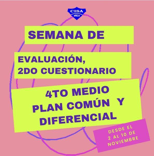 Cuestionarios Plan Común y Plan Diferencial 4tos Medios.