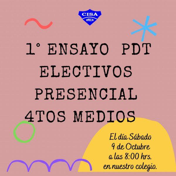 Ensayo PDT de Electivos Presencial